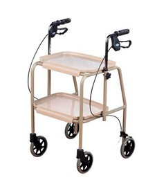 Adjustable Trolley Walker